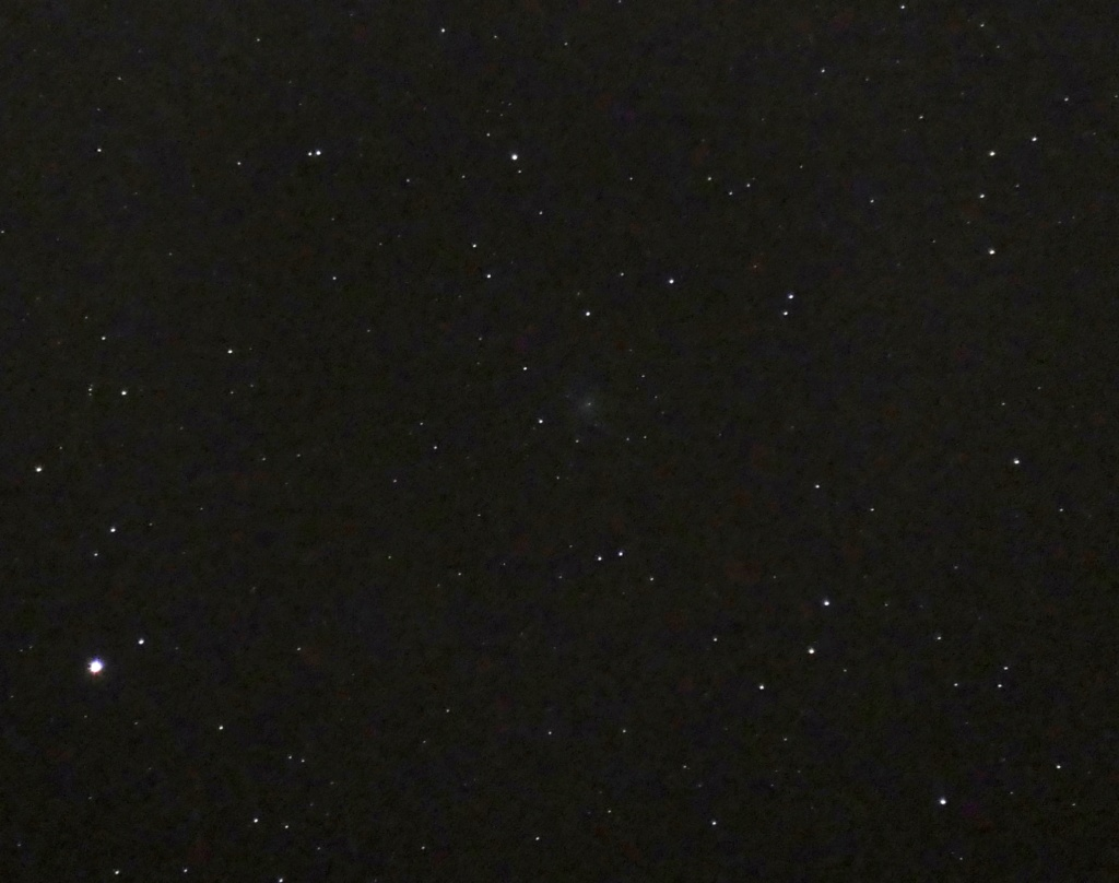 C/2019 Y4 (ATLAS) : une comète qui promet ? P1010510