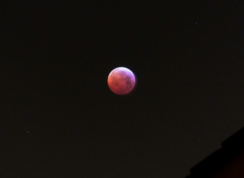 Eclipse totale de Lune 21 janvier 2019 P1460811