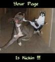 esos anuncios miticos... - Página 3 Catdog10