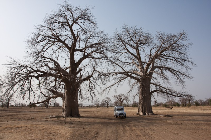 14- de Kayes (Mali) à Sélibabi (Mauritanie) par la piste Kayes_10