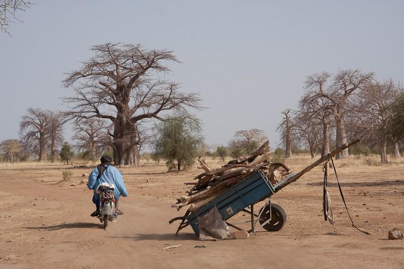 14- de Kayes (Mali) à Sélibabi (Mauritanie) par la piste Kayes_13