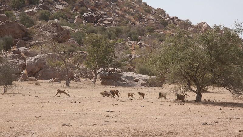14- de Kayes (Mali) à Sélibabi (Mauritanie) par la piste Kayes_22