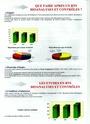 Quelques informations sur la filière Bio Analyses et Contrôles à l'ENCPB Bts_bi13