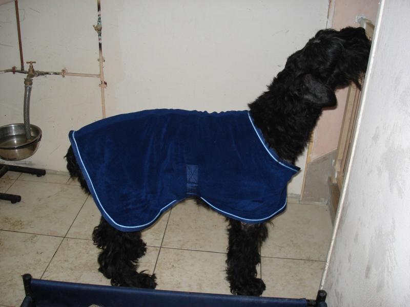 Froid: lui faire porter un manteau ou pas? Pops_010
