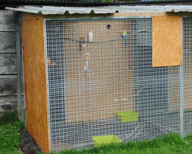 Les installations de vos oiseaux Photo_28