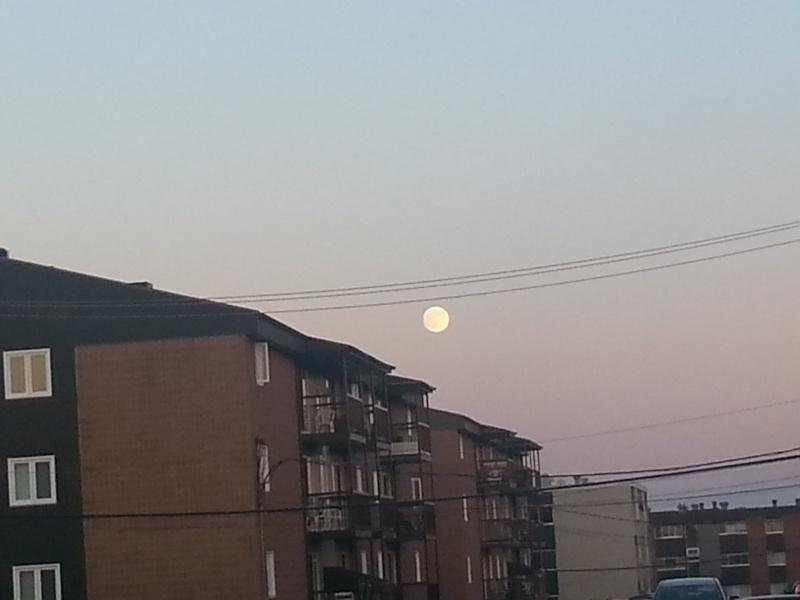 J'ai photographier la Lune  ( 22 Juin 2013 ) 03210