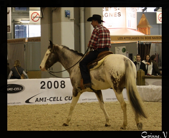 le salon du cheval 2008 Cowboy10