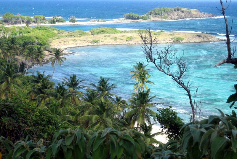 Martinique revisitée : des miniatures toujours Tracac10