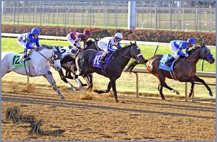 RACE HORSE. ♠