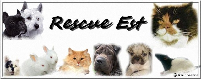 Vente au profit des associations Rescue10