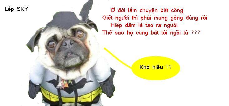 Tuyển tập truyện cười (update daily) - Page 5 Chukil10