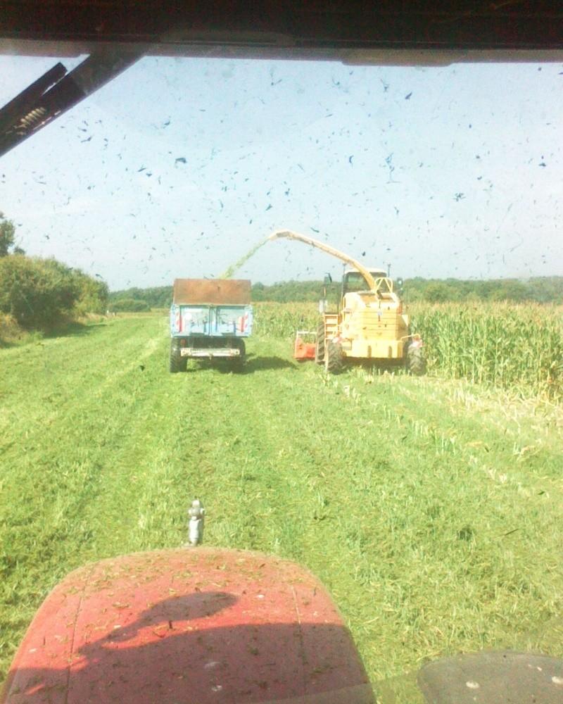 Ensilage de maïs 2008 - Page 6 Photo_22