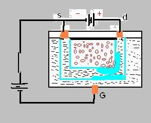 jfet(junction feld effect transistor) Www10