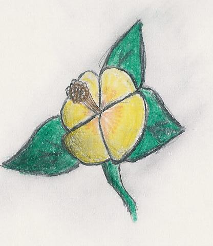 Dibujitos de Flores Campan10