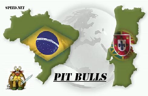 PIT BULLS PT&BR
