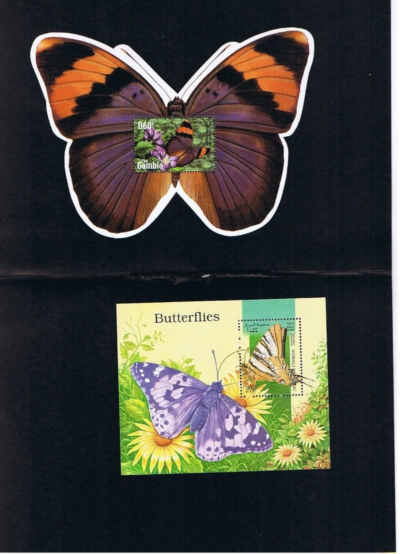 Schmetterlinge Schmet12