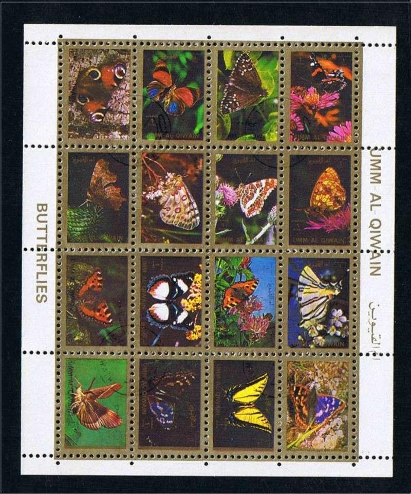 Schmetterlinge Schmet14