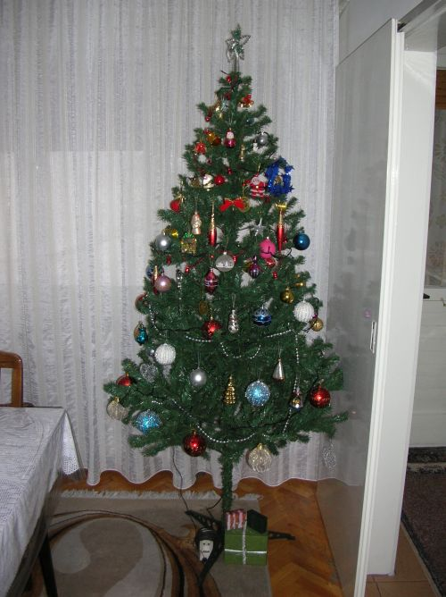 Post your Christmas tree! Dscn2510