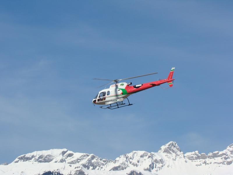 AS 350 BLUGEON Hélicoptères Classe 700 Dsc02310
