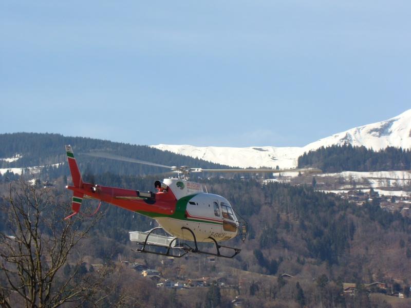 AS 350 BLUGEON Hélicoptères Classe 700 Dsc02311