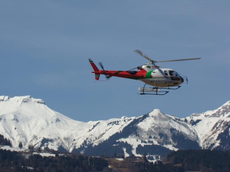AS 350 BLUGEON Hélicoptères Classe 700 Dsc02410