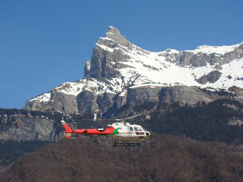 AS 350 BLUGEON Hélicoptères Classe 700 Dsc02411