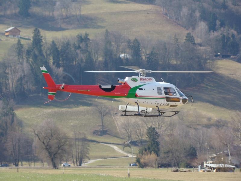 AS 350 BLUGEON Hélicoptères Classe 700 Dsc02412