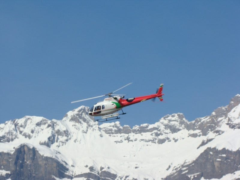 AS 350 BLUGEON Hélicoptères Classe 700 Dsc02413