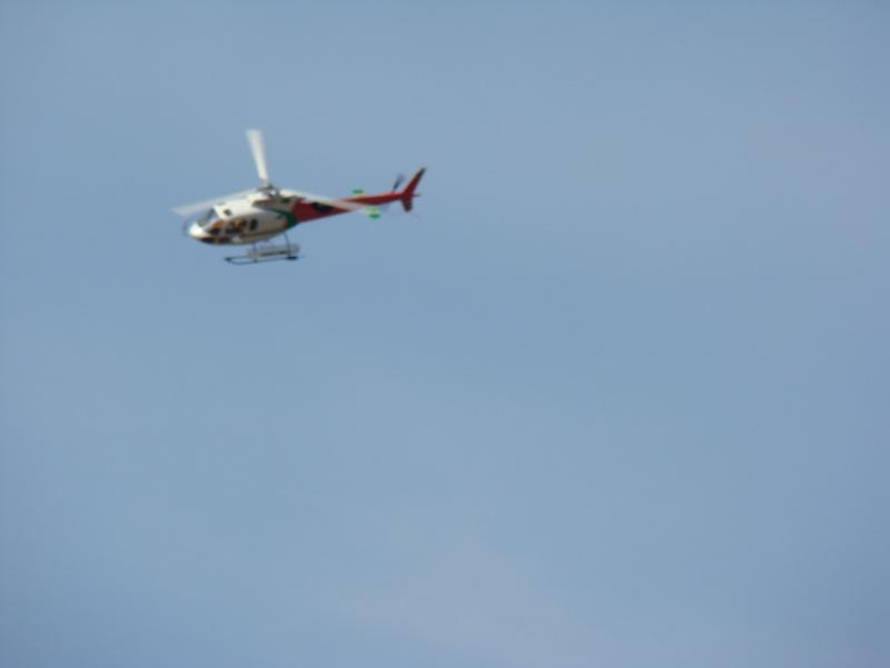 AS 350 BLUGEON Hélicoptères Classe 700 Dsc02414