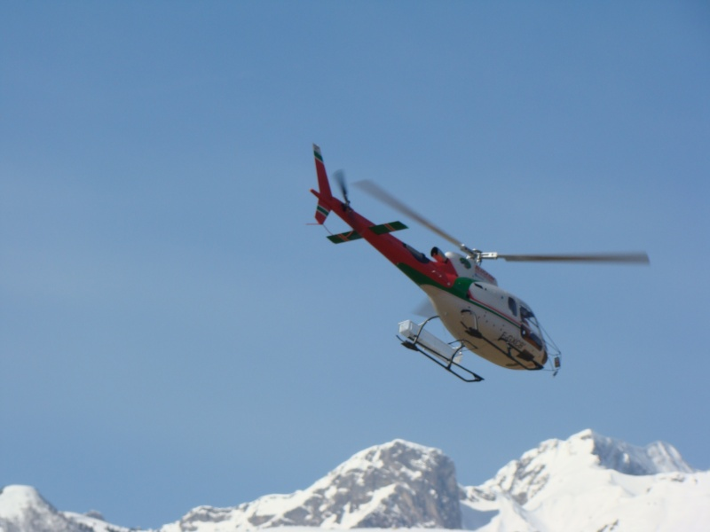 AS 350 BLUGEON Hélicoptères Classe 700 Dsc02415