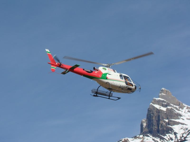 AS 350 BLUGEON Hélicoptères Classe 700 Dsc02416