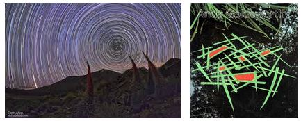 Juxtapositions oulipiennes d'images - Poésie des contrastes Geomet11
