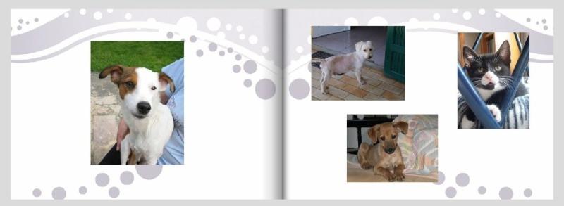 Livre photos 2010 - commande terminée Livrep12