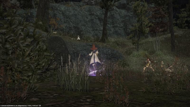A Realm Reborn: FF XIV - Beta Phase 3 Screencaps Ffxiv_16