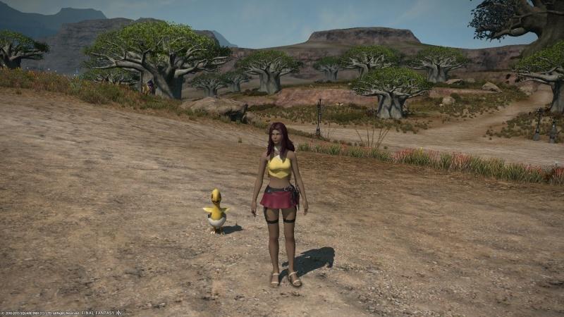 A Realm Reborn: FF XIV - Beta Phase 3 Screencaps Ffxiv_41