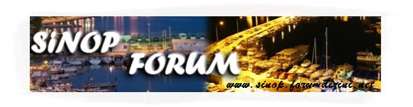 Büyük Sinop Forum Sitesi