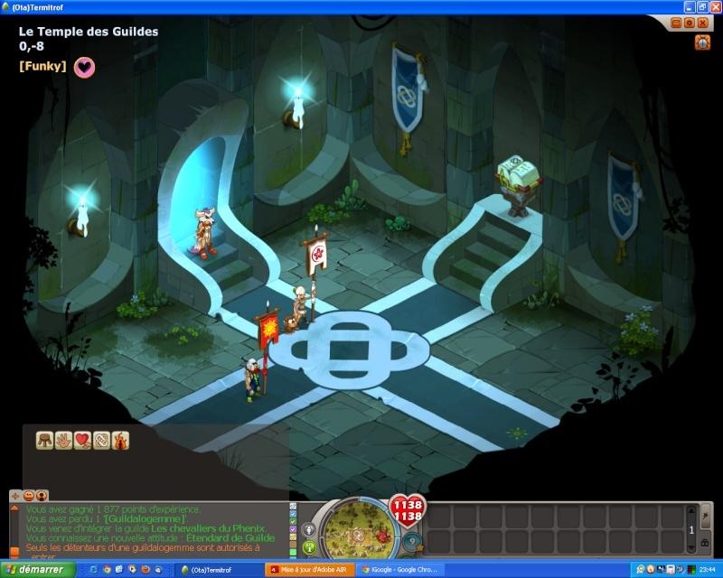 Dofus 2.13 - Guerre des Guildes Emote10