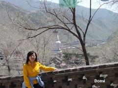 La Chine sac au dos (8) : Une autre Montagne Bouddhiste. Les Wutai Shan en mai 2008 (Epouses et Concubines - Pingyao) Wutais13