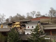 La Chine sac au dos (8) : Une autre Montagne Bouddhiste. Les Wutai Shan en mai 2008 (Epouses et Concubines - Pingyao) Wutais14
