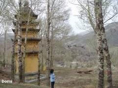 La Chine sac au dos (8) : Une autre Montagne Bouddhiste. Les Wutai Shan en mai 2008 (Epouses et Concubines - Pingyao) Wutais15