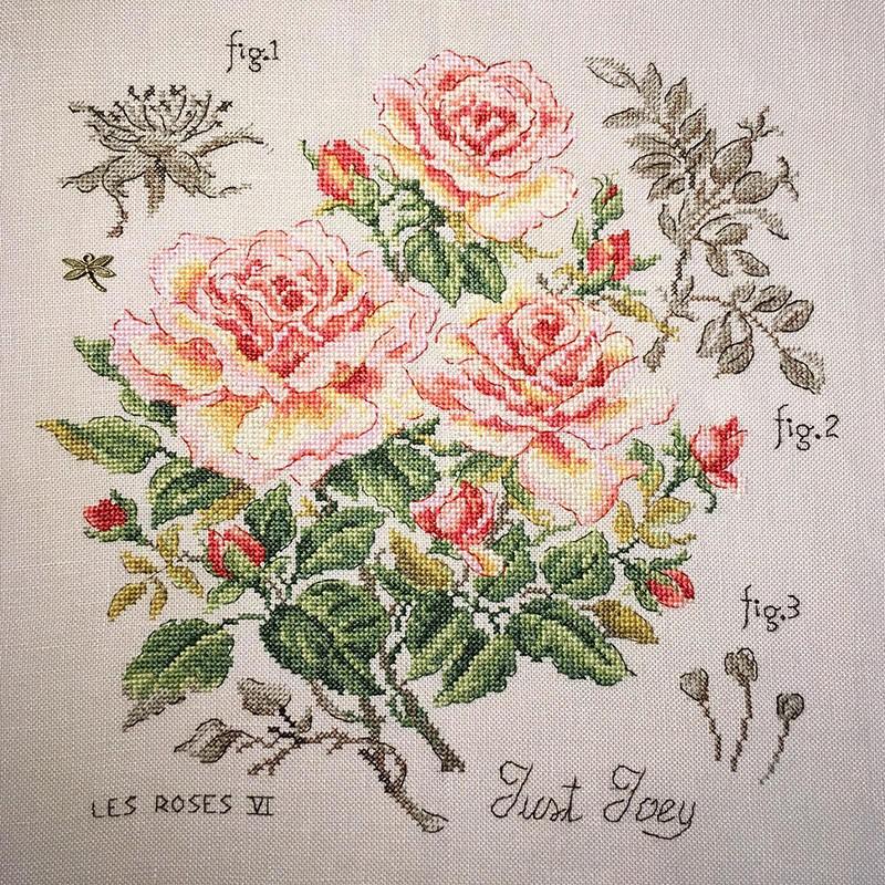 Une nouvelle Rose de Véronique Enginger Lin-et10
