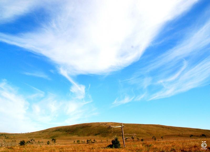 Rassemblement COX & 2CV (dérivés air-cooled) 11 12 13  JUIN 2011 (We de la pentecôte) dans le 29  Menez-10