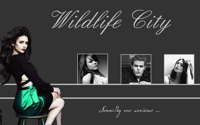 Wildlife City