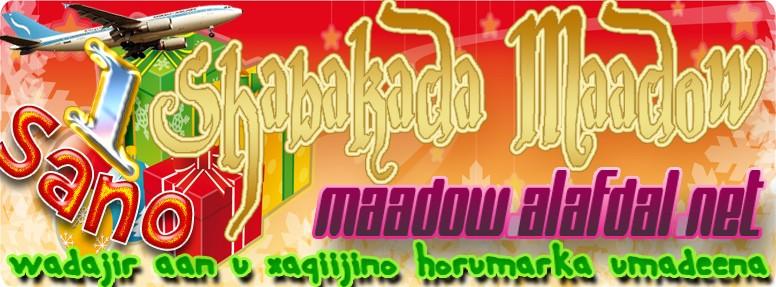 Shabkada Maadow