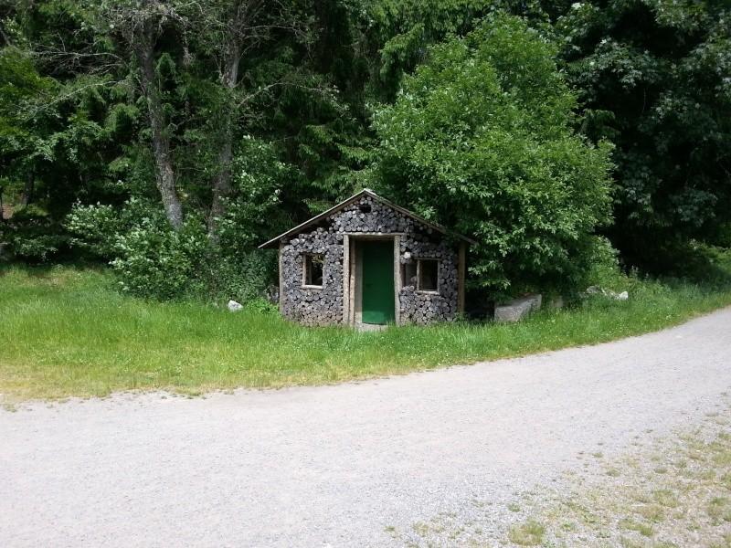 Sortie Forêt Noire. The Retour  20130633