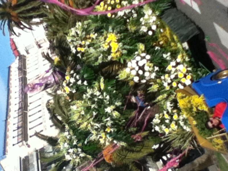 Carnaval et bataille des fleurs Photo_14