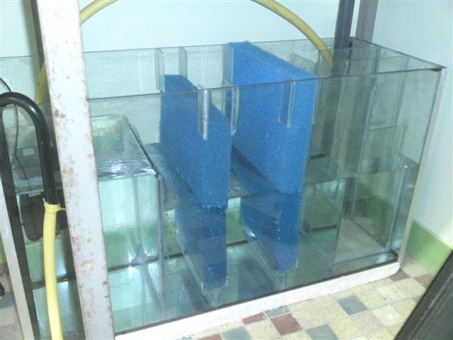 fabricationd'une décante pour eau douce Decf210