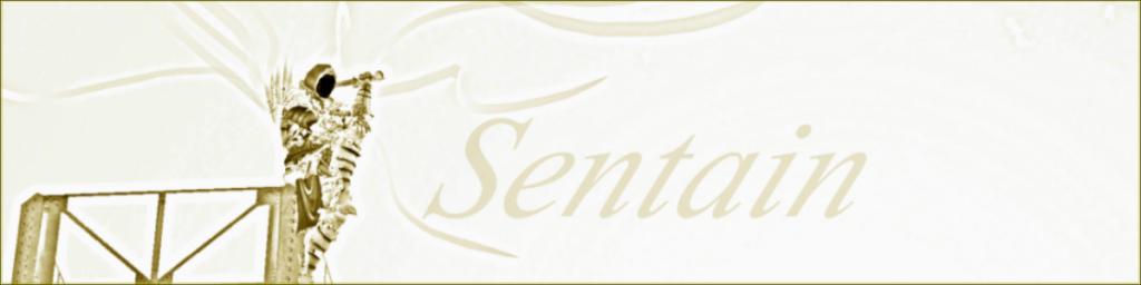 Sentain IC Sentai10