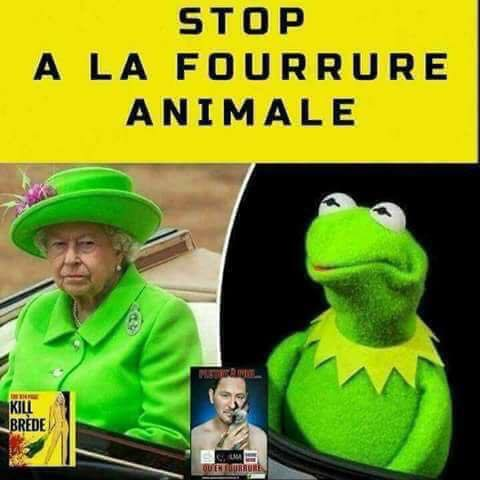 Humour - Page 14 4120