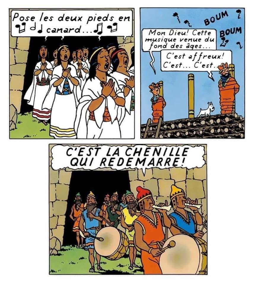 Humour - Page 29 Tintin11